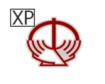 Ввод ДПУ 3.0.11 Windows XP версия